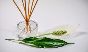 alergia na środki zapachowe