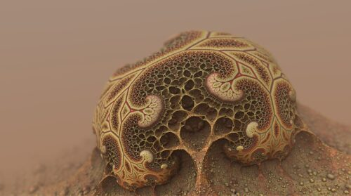 Diagnostyka alergii – testy skórne z antygenami grzybów
