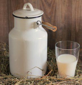alergia na białka mleka krowiego